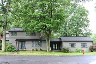 Tyrone Single Family Home For Sale: 171 Oak Hill Lane