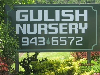 Blair County Commercial For Sale: 603 Sabbath Rest Road
