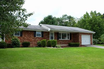 Hollidaysburg, Duncansville Single Family Home For Sale: 705 10th St