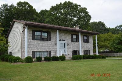 Blair County Single Family Home For Sale: 602 Tree Lane