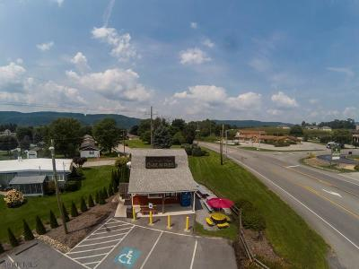 Blair County Commercial For Sale: 7673 Woodbury Pike