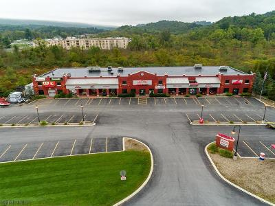 Altoona Commercial For Sale: 433 Sabbath Rest Road