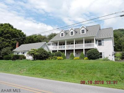 Blair County Single Family Home For Sale: 393 Lock Mountain Rd