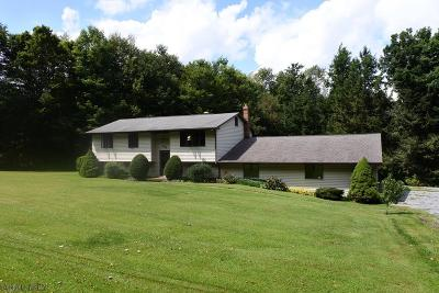 Ebensburg Single Family Home For Sale: 302 Buck Rd