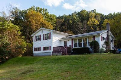 Tyrone Single Family Home For Sale: 801 Oak St