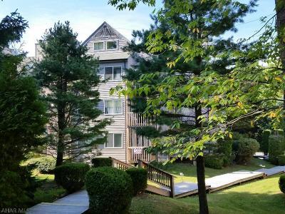 Claysburg Single Family Home For Sale: C1503 Blue Knob S&cc, Rcc 197 E