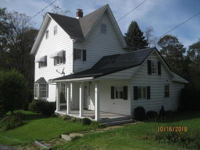 Single Family Home For Sale: 316 Railroad Street
