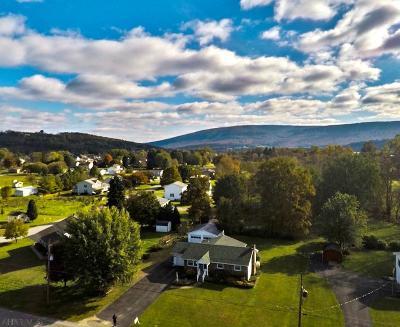Hollidaysburg, Duncansville Single Family Home For Sale: 19 South Park Lane
