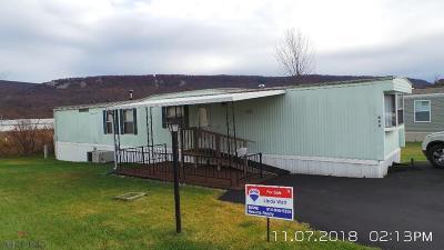 Hollidaysburg, Duncansville Single Family Home For Sale: 809 Kitty Lane