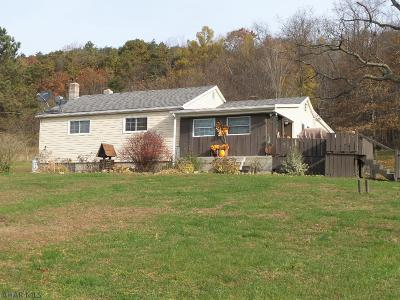Hollidaysburg, Duncansville Single Family Home For Sale: 135 Swinging Bridge Road