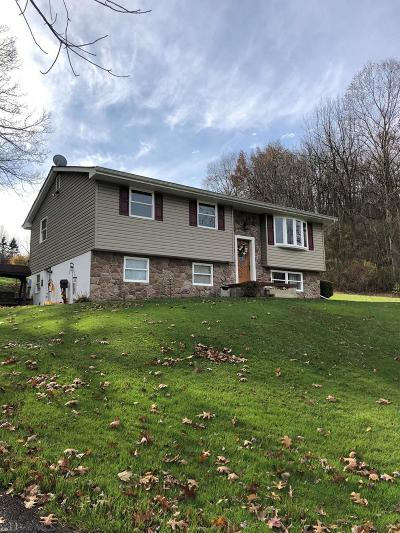Hollidaysburg Single Family Home For Sale: 1002 Tel Power Road