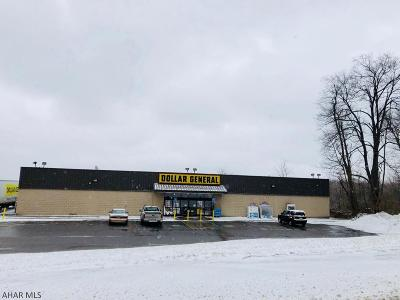 Carrolltown PA Commercial For Sale: $975,000