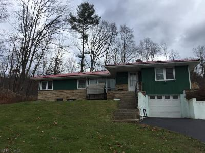 Altoona Single Family Home For Sale: 1065 Amelia Ave