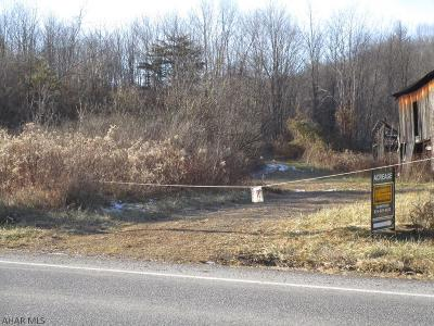 Residential Lots & Land For Sale: Off 96s/Hyndman Rd.