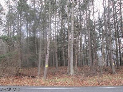 Tyrone PA Residential Lots & Land For Sale: $104,900