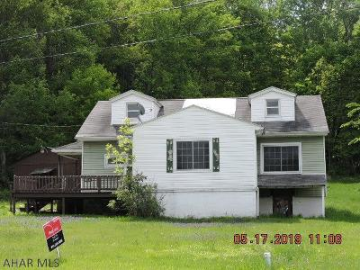 Cresson, Lilly Single Family Home For Sale: 1387 Dulancey Dr