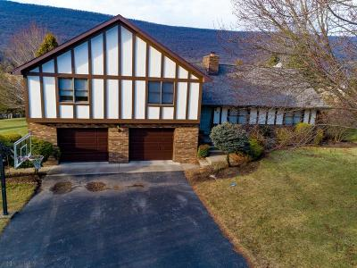 Hollidaysburg Single Family Home For Sale: 210 Clubhouse Drive