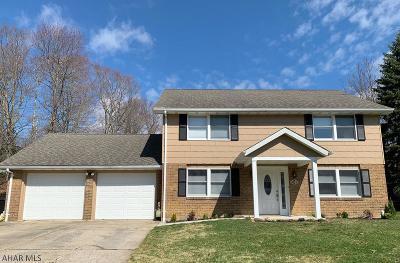 Ebensburg Single Family Home For Sale: 202 Laurelbrook Road
