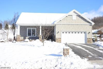 Duncansville Single Family Home For Sale: 221 Hamer Dr