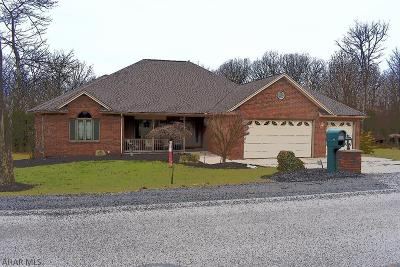 Hollidaysburg, Duncansville Single Family Home For Sale: 317 Sylvan Oakes Dr