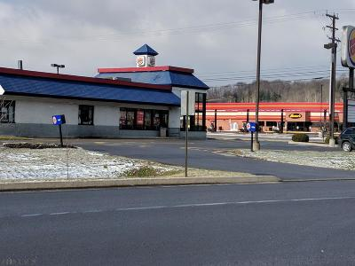 Blair County Commercial For Sale: 970 Plank Road