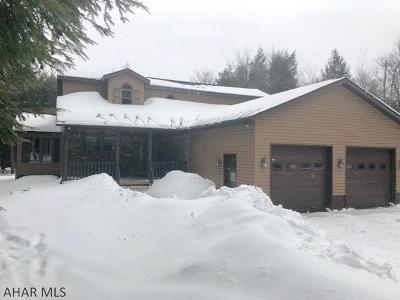 Single Family Home For Sale: 112 Snow Ridge