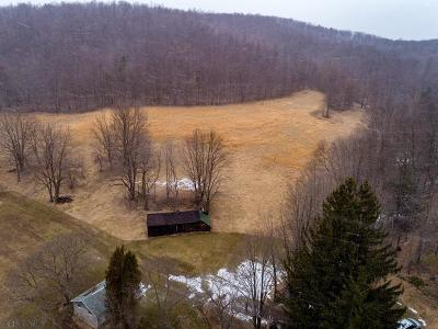 Blair County Single Family Home For Sale: 2653 Homers Gap Road