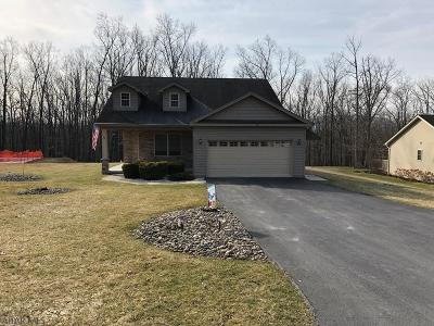 Blair County Single Family Home For Sale: 360 Wertz Drive