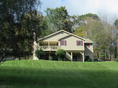 Blair County Single Family Home For Sale: 1600 Knob Run Road