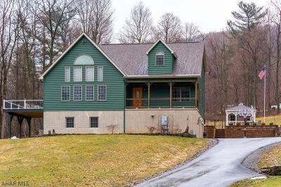 Altoona Single Family Home For Sale: 199 Nittany Lane