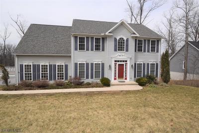 Blair County Single Family Home For Sale: 810 Brush Oaks Dr