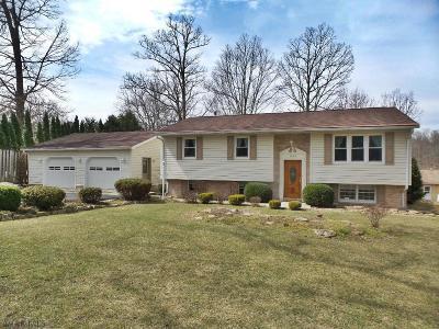 Altoona Single Family Home For Sale: 1984 Bellmeade Drive