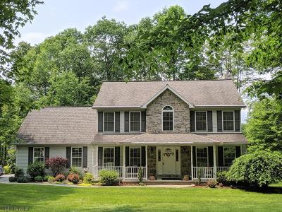 Cresson, Lilly Single Family Home For Sale: 1178 Coach Road