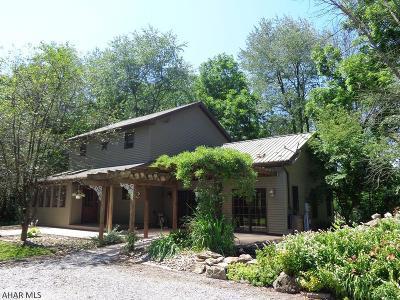 Williamsburg Single Family Home For Sale: 205 McKnight Lane