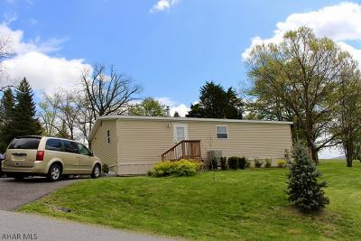 Hollidaysburg, Duncansville Single Family Home For Sale: 546 Castle Drive