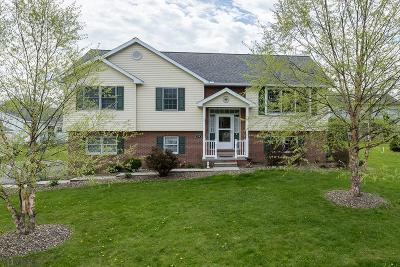 Hollidaysburg, Duncansville Single Family Home For Sale: 270 Richards Drive