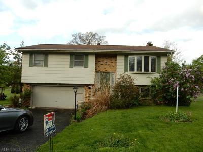 Altoona Single Family Home For Sale: 2905 Wehnwood Road
