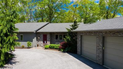 Blair County Single Family Home For Sale: 249 Fox Chase Drive