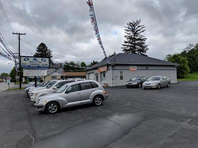 Blair County Commercial For Sale: 163 Allegheny Street