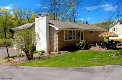Hollidaysburg Single Family Home For Sale: 180 Swinging Bridge Road