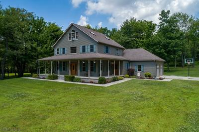 Cresson, Lilly Single Family Home For Sale: 100 Guzic Lane