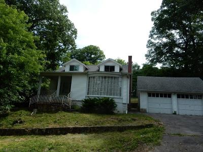 Blair County Single Family Home For Sale: 545 Neal Ave