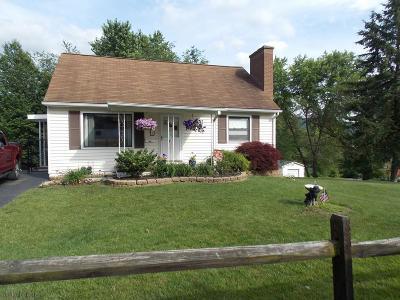 Altoona Single Family Home For Sale: 721-723 E Bell Ave