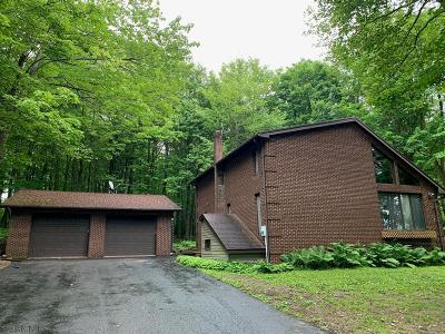 Single Family Home For Sale: 1288 1288 Level Road