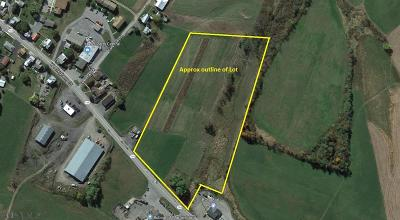 Commercial For Sale: Cove Mountain Road