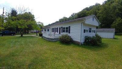 Blair County Single Family Home For Sale: 243 Hickory Dr