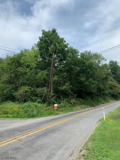 Blair County Residential Lots & Land For Sale: Plum Creek Rd