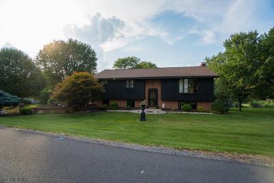 Single Family Home For Sale: 1106 Robin Lane