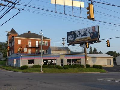 Altoona Commercial For Sale: 229 E Pleasant Valley Blvd