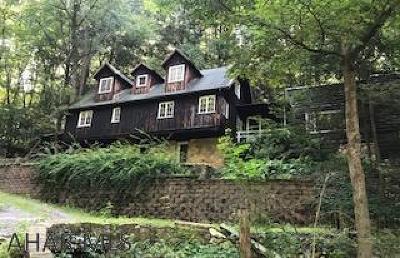 Tyrone Single Family Home For Sale: 2117 Birmingham Pike